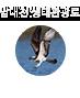 남대천 / 하단내용 참조